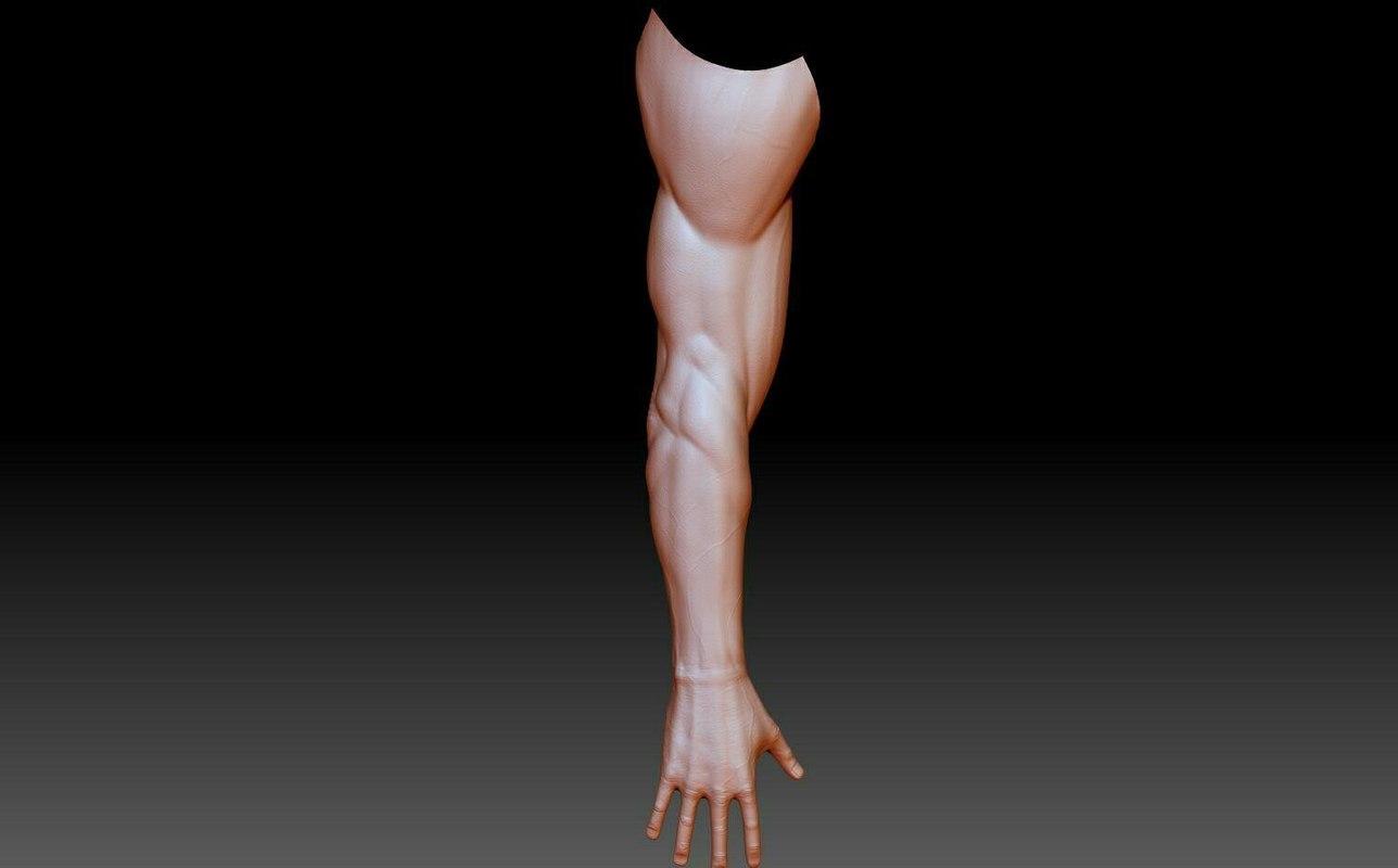 3D ready hand model