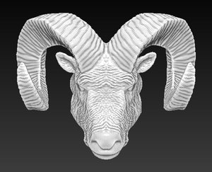 3D ram head horn