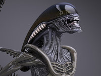 Alien Xenomorph High Detail