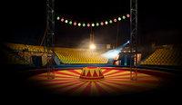 Circus Asset