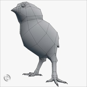 3D base mesh chick