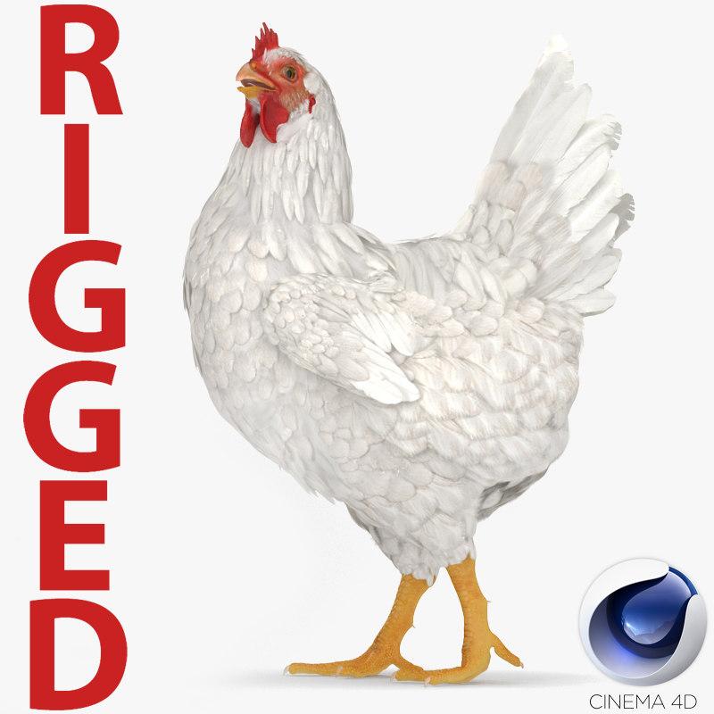 white chicken rigged 3D model