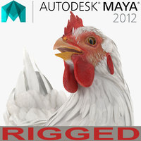 White Chicken Rigged for Maya
