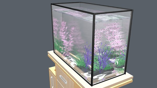 aquarium table water model