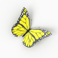 3D butterfly photorealistic model