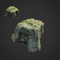 3D scanned nature tree stump