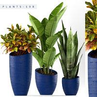 3D plants set 138