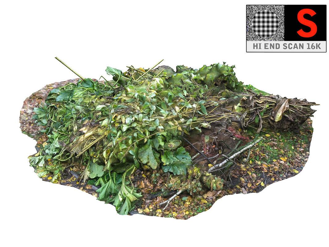 ground plants 16k 3D model