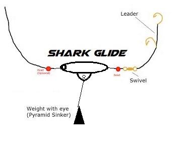 3D model shark glide