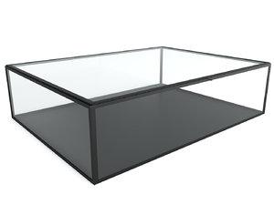 3D misia glass box model