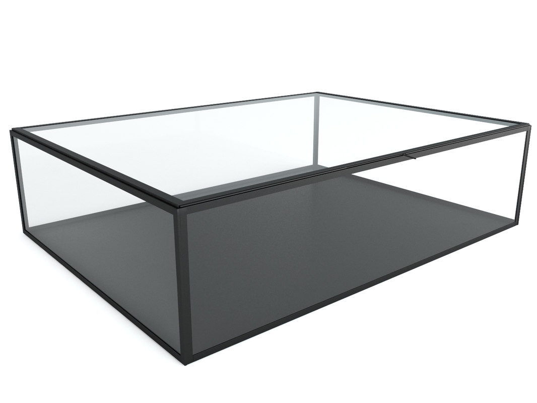 3D misia glass box model