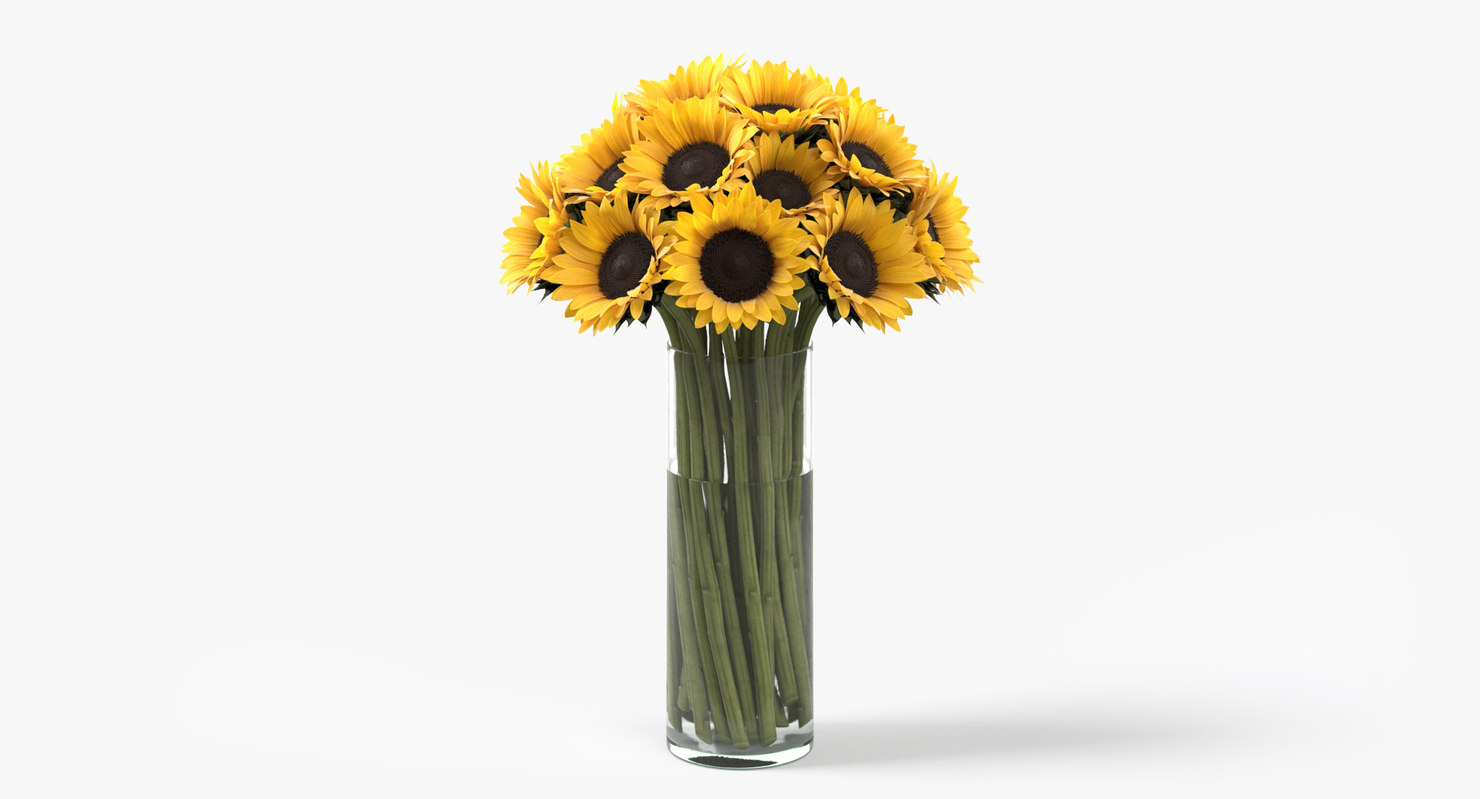 3D photorealistic sunflowers bouquet flowers