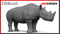 3D model rhino animation