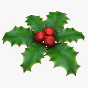 3D holly berry