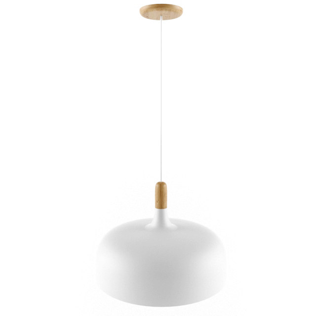 northern lighting - acorn 3D