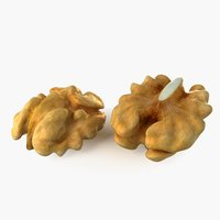 walnut nut 3D