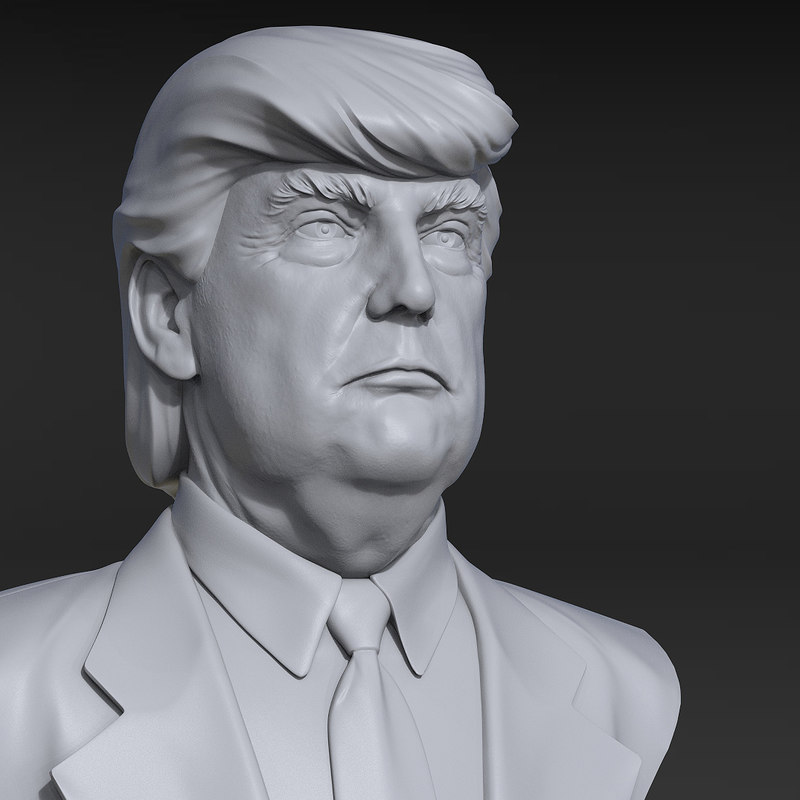Bust donald trump 3d model turbosquid 1217679 for Donald model
