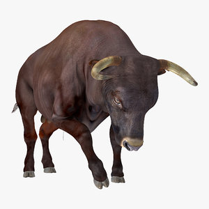 3D bull attacking pose