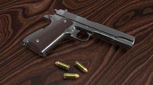 3D colt 1911-a1 goverment pistol model