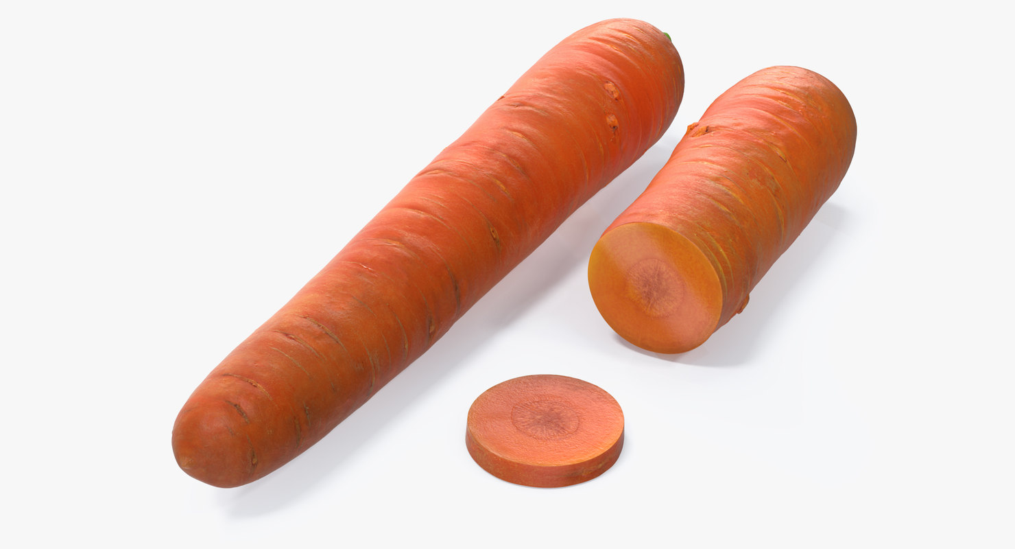 carrot realistic model