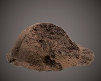 ant anthill 3D model