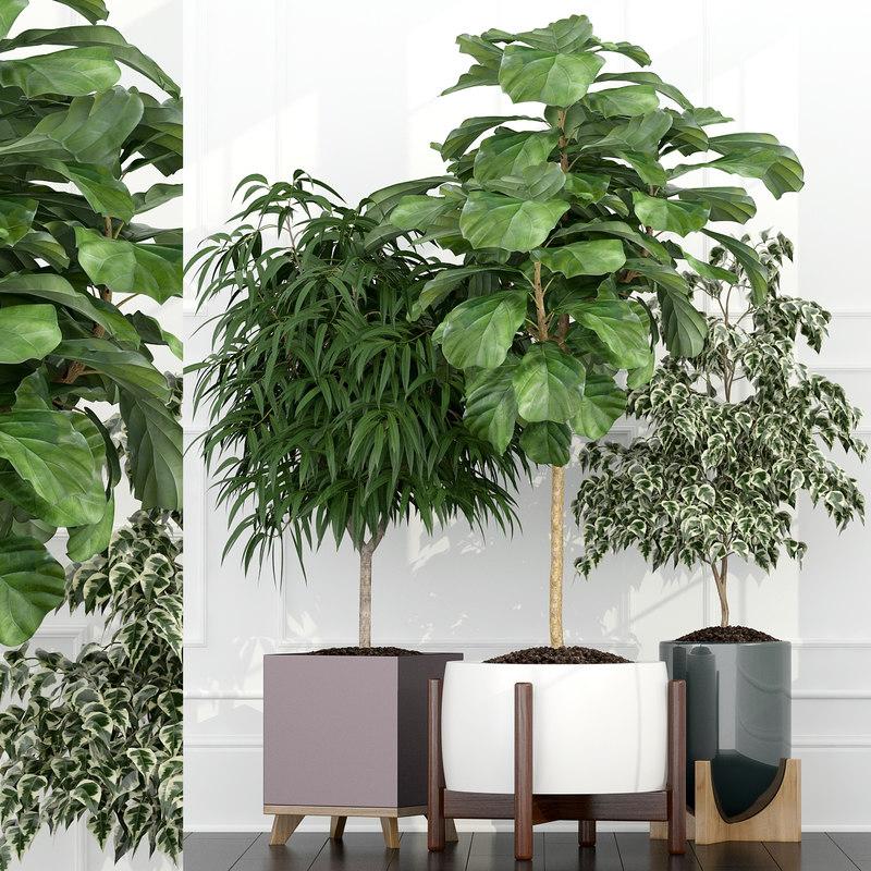 plants 67 3D
