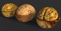 3D walnut model