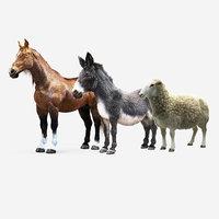 Animals Collection Ornatrix (Horse/Donkey/Sheep)