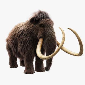wolly mammoth 3D