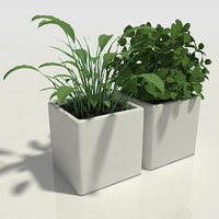 Herbs in Pots - Kitchen Decorative Set
