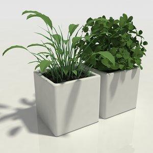 3D herbs pots model