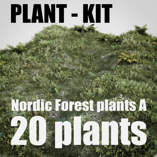 nordic forest plants 3D