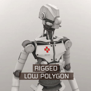 3D medical rigged model