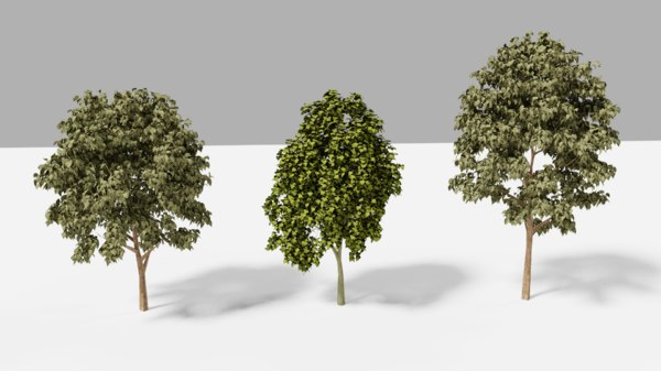 trees realistic 3D