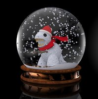 The dinosaur in the snow globe
