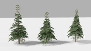 trees 2 realistic 3D model