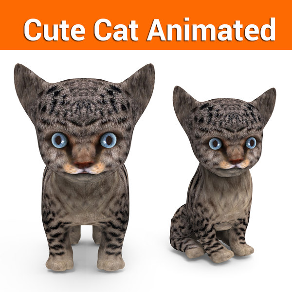 3D cute cat animation