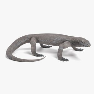 komodo dragon rigged 3D