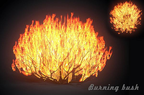 burning bush forest tree 3D model