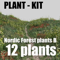 nordic forest plants B collection