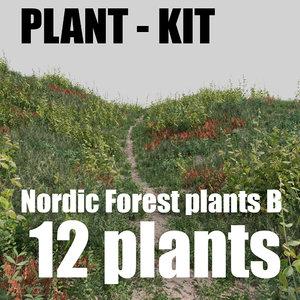 3D nordic forest plants b