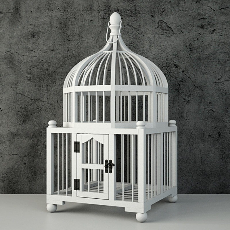 wooden decorative cage zara 3D model