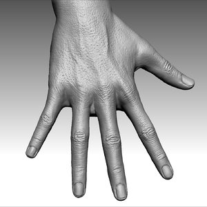 female hand realistic 3D
