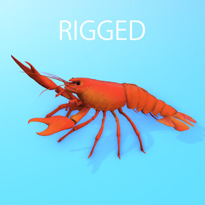 crayfish model