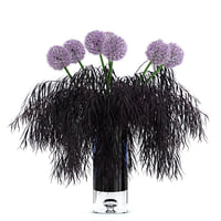 realistic agonis allium flowers 3D model