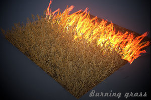 3D model burning grass