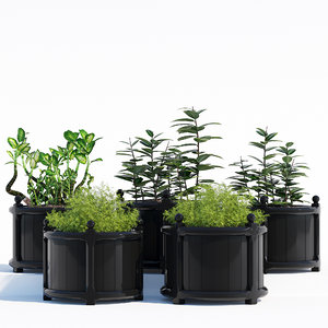 3D model versailles planter black