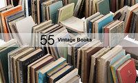 3D vintage books model