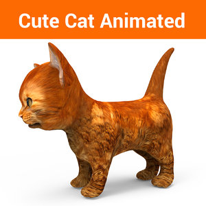 3D cute cat animation model