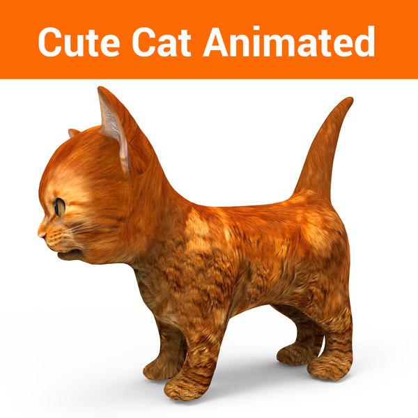 3D cute cat animation model
